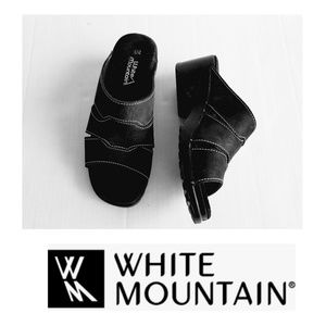 WHITE MOUNTAIN WEDGE SLIDES